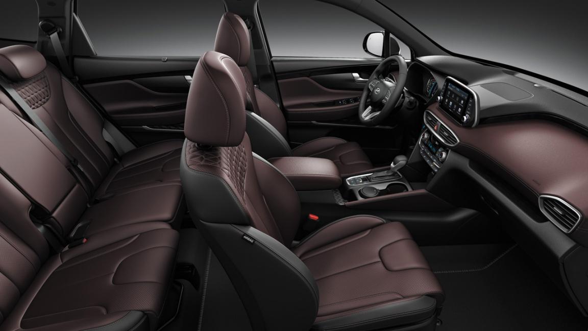 Hyundai Santa Fe Black&Brown